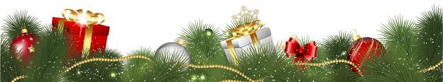 Die PNVG wünscht Ihnen ein schönes Weihnachtsfest.